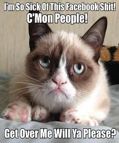 Grumpy -Cat
