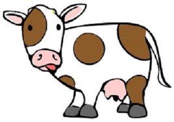 A -Dairy- Farmer