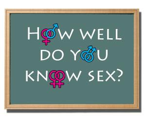 Sexual- Tension- Quiz