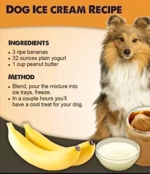Dog -Ice- Cream -Recipe