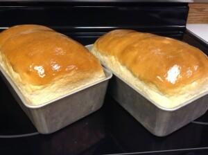 Amish -White- Bread