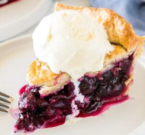 Homemade -Blueberry -Pie